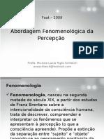 1582_1_Fenomenologia