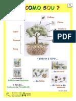 poster1-comosou-110830100429-phpapp02