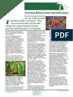 2007-2 Identifying Bittersweet