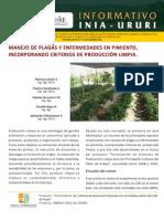 Informativo_INIA_Ururi_33 Pimentón