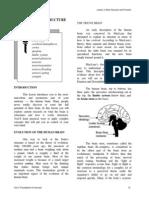 Rotc Brain Function