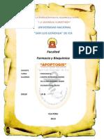 Apoptosis Celular