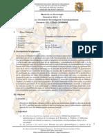 corrientes sociológicas contemporáneas_ 2012_II.pdf