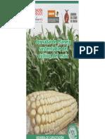 Jornada de Manejo Sustentable Del Cultivo Del Maiz