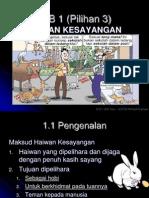 bab6haiwankesayangan-091220042241-phpapp02