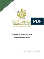 Manual Organizacion DDR Municipio Chihuahua.pdf