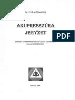 Dr. Csikai Erzs Bet Akupressz Ra Jegyzet