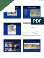 7363-Saltos_Horizontais.pdf