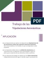 Tripulaciones Aeronáuticas