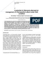 Mycoherbicidal Potential of Alternaria Alternata for Management of Chenopodium Album Under Field Condition