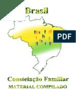 CONSTELAÇÕES FAMILIARES - COMPLETO