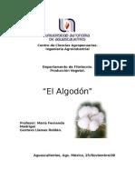 Monografia Del Algodon