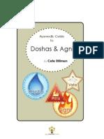 Doshas & Agni