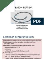 Hormon III