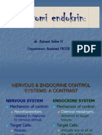 Dr Zainuri Kuliahanatomi Endocrine