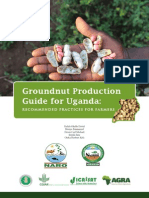 Groundnut Production Guide - Recommended Practices for Farmers