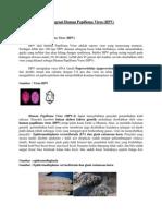 Mengenal Human Papilloma Virus