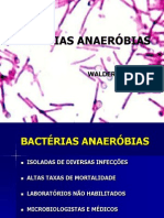 anaerbios-fmj-2010-110717172355-phpapp01