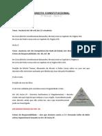 Direito Constitucional .docx