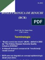 Curs 5 Nefro Boala Cronica de Rinichi