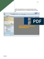 Abap Web Dynpro - Pratica 2
