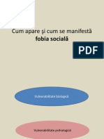 132957128 Model Explicativ Fobia Sociala