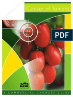 bacterialcanker TOMATE.pdf