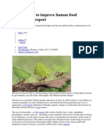 Breed Insects to Improve Human Food Security 2013