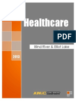 AWIC Healthcare Report for Elliot Lake and Blind River - Final
