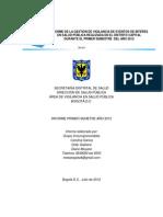 Informe Salud Publica i Sem 2012