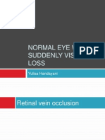 Normal eye with immediately vision loss.pptx