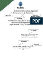 Tapa Informe Practica Aquatech 2008