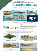 Guia de Peces (Fish Guide), Pando