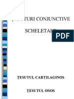 Histologie-lp6 Tesutul Cartilaginos Osos