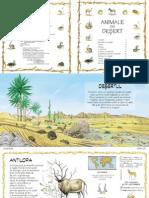 Animale Din Desert
