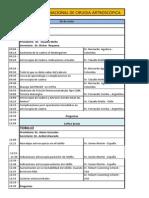 Programa Artroscopica 2013