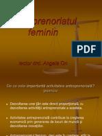 Antreprenoriat Feminin 26 Martie2010