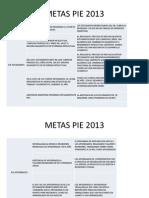 METAS PIE 2013