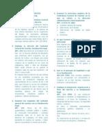 Laboratorio Derecho Constitucional Examen Final