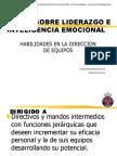 Curso de Inteligencia Emocional y Liderazgo I