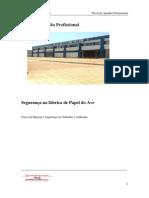 PAP Armanda Dias2_docx