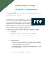Anatomia_1 (2) CC MS MI