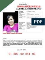 Alerta Amber 005
