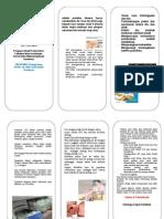 Leaflet Asi Eksklusif Kel.6