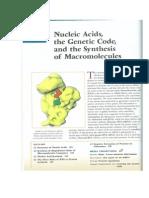 Lodish Et Al 2000-Acidos Nucleicos