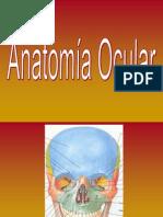 Presentación de Anatomia Ocular