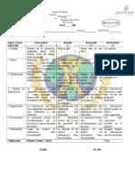 Rubrica Para Evaluar La Investigacion de Presupuesto - Copy