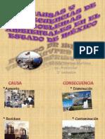 2 CAUSAS Y CONSECUENCIAS DE PROBLEMAS AMBIENTALES EN EL ESTADO DE MÉXICO