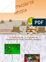 DEFORESTACIÓN EN MÉXICO