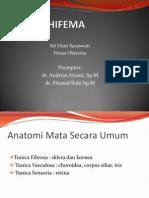 Crs Hifema